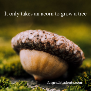 Picture of an acorn with saying It only takes an acorn to grow a tree